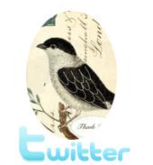 Uniques Twitter